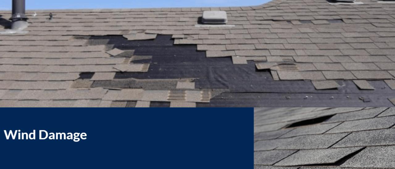 Wind damage 1280x550